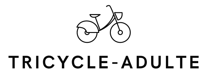 tricycle-adulte.eu